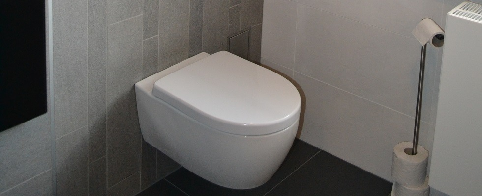 Toilet Kalmthout Belgie Badkamer